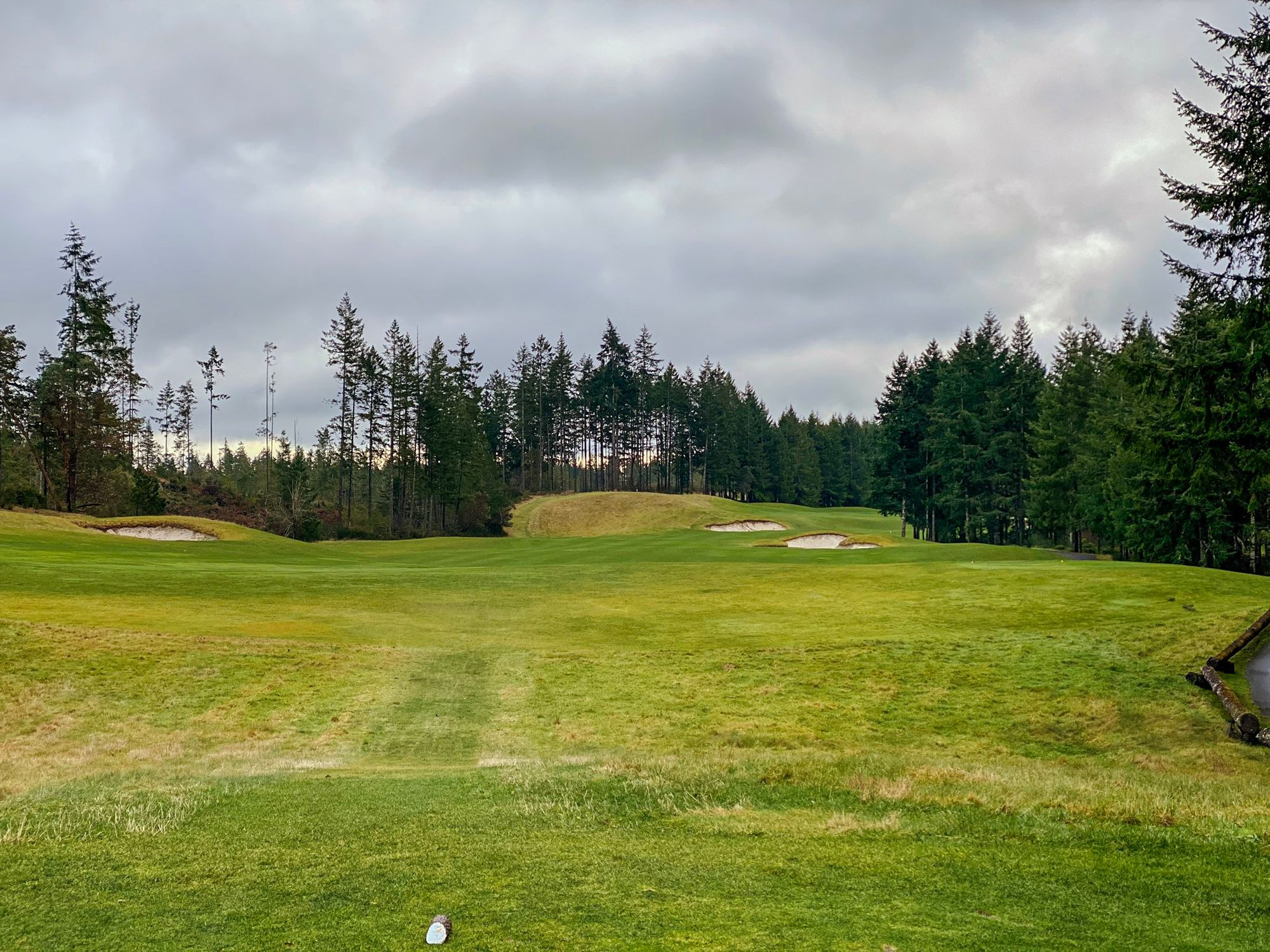 Trophy Lake offers tranquility, PNW beauty, and spacious fairways
